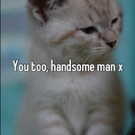 You too, handsome man x