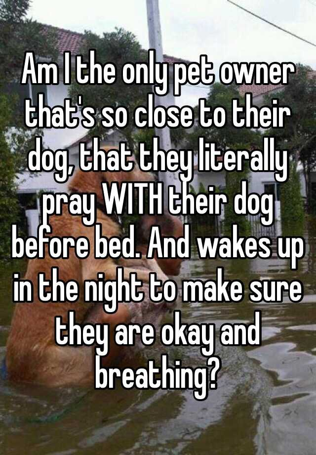 Am I the only pet owner that's so close to their dog, that they literally pray WITH their dog before bed. And wakes up in the night to make sure they are okay and breathing?