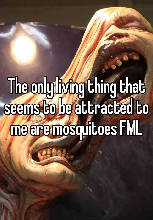 The only living thing that seems to be attracted to me are mosquitoes FML