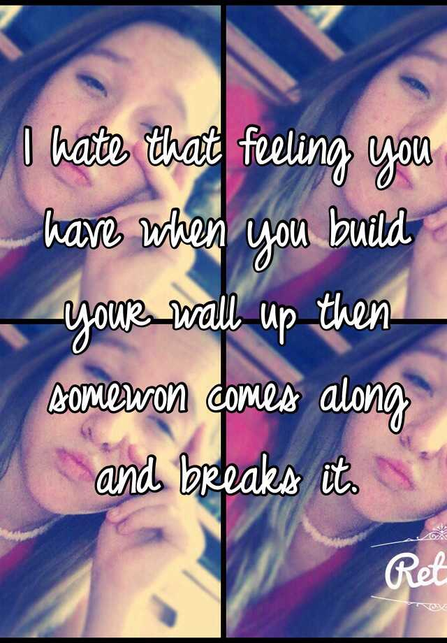 I hate that feeling you have when you build your wall up then somewon comes along and breaks it.