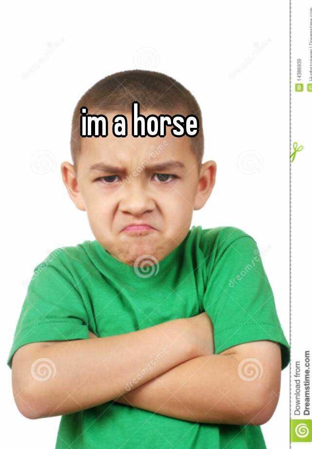 im a horse