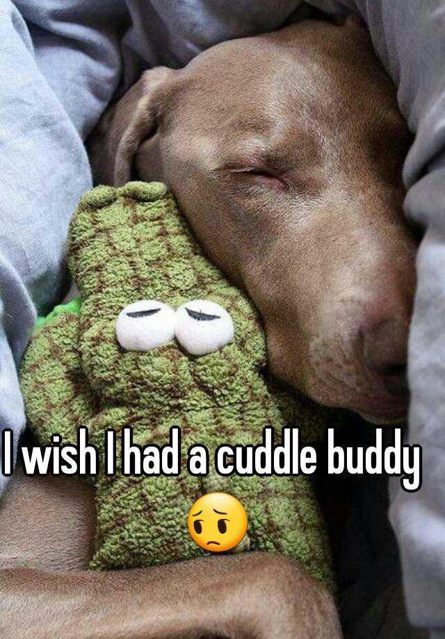 I wish I had a cuddle buddy 😔