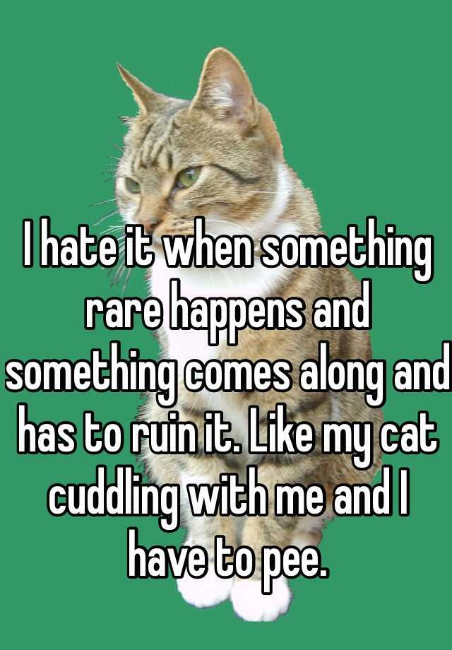 I hate it when something rare happens and something comes along and has to ruin it. Like my cat cuddling with me and I have to pee.