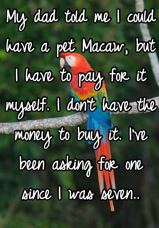 My dad told me I could have a pet Macaw, but I have to pay for it myself. I don't have the money to buy it. I've been asking for one since I was seven..