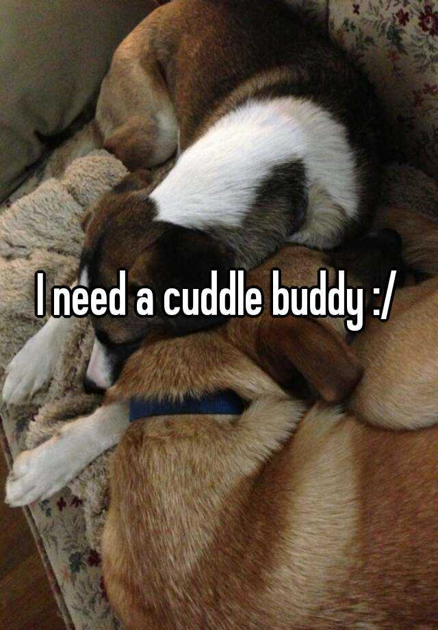 I need a cuddle buddy :/