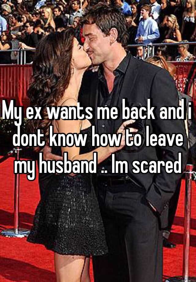 My ex wants me back and i dont know how to leave my husband .. Im scared
