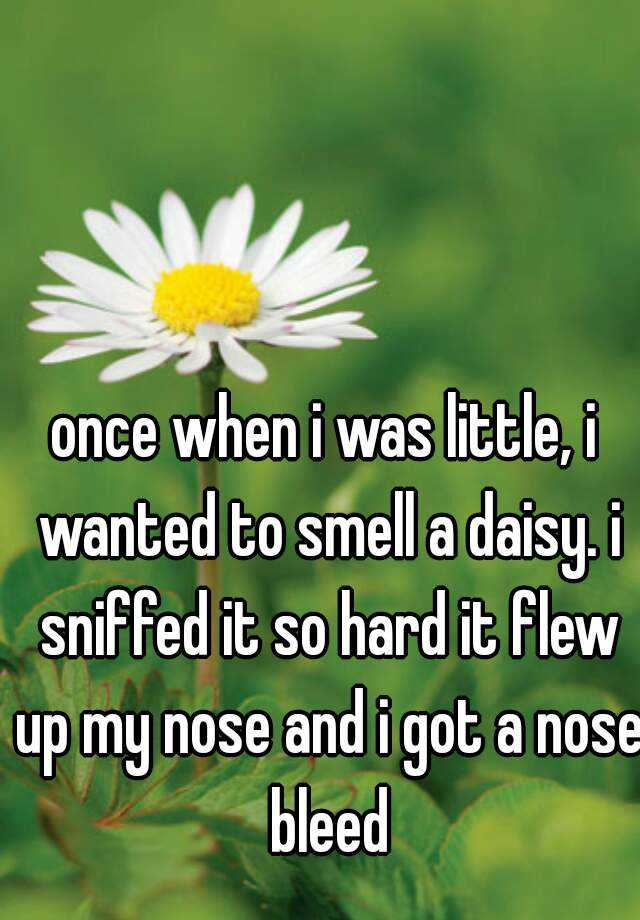 once when i was little, i wanted to smell a daisy. i sniffed it so hard it flew up my nose and i got a nose bleed