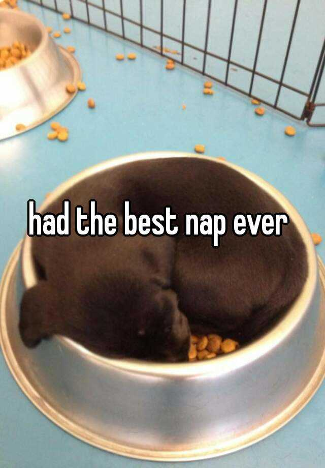 had the best nap ever