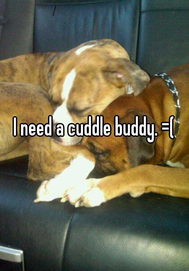 I need a cuddle buddy. =(